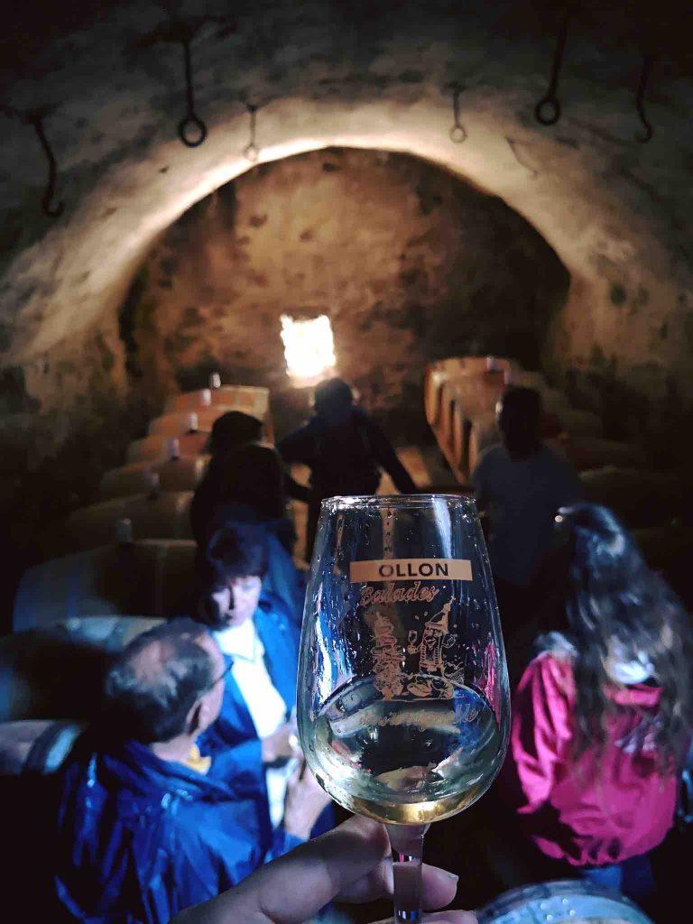 Wine tasting in Ollon