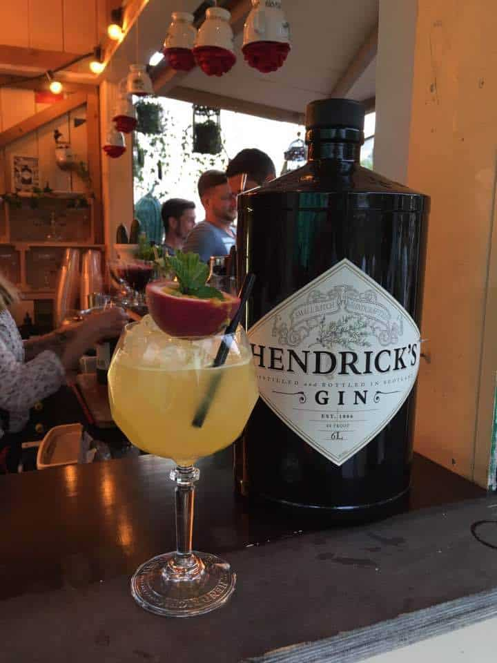 World Cucumber Day at Frau Gerolds with Hendricks