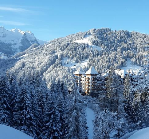 the-alpina-gstaad