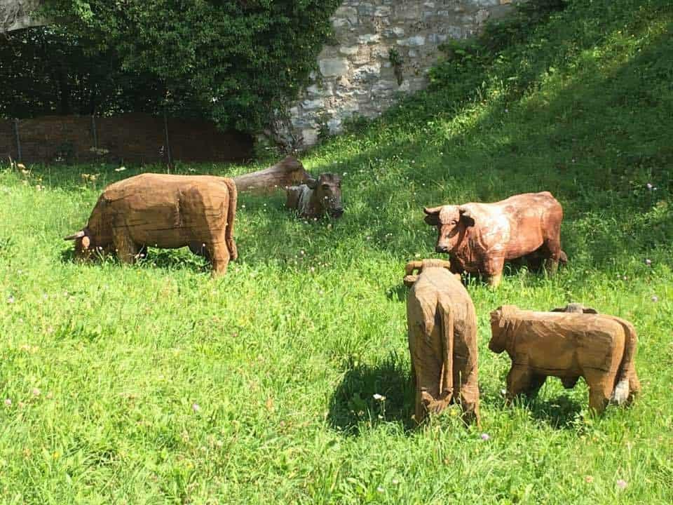 Wooden cows at Schloss Kyburg