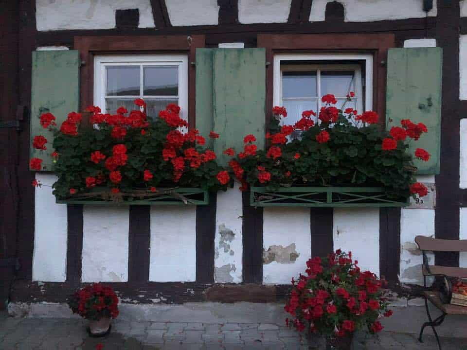 Highlights From a Trip To The Schwarzwald Germany
