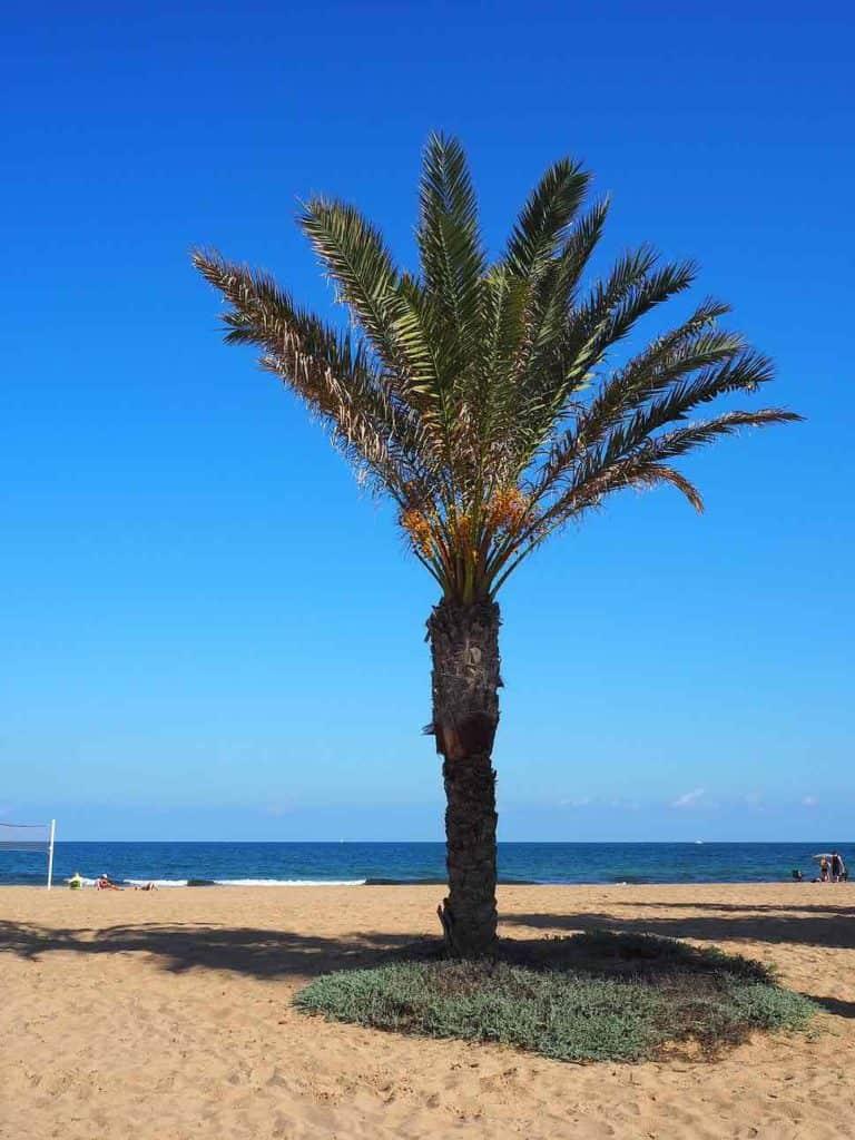 Short Break to Murcia and Alicante Spain