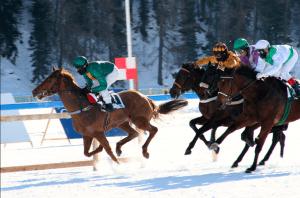 St Moritz Snow Polo