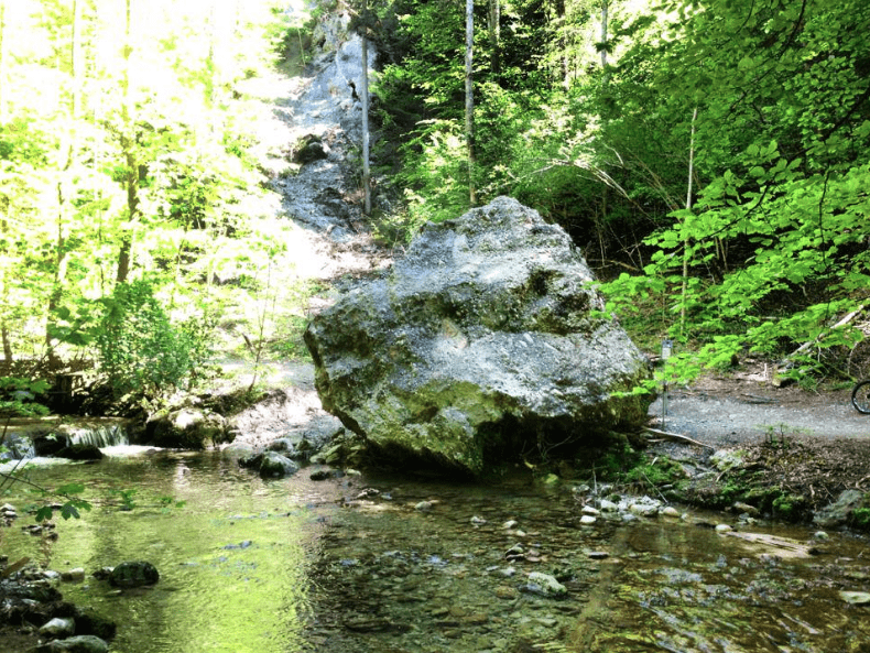 Boulder in the Tobler River