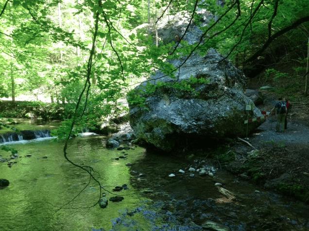 Tobler river near Kusnacht