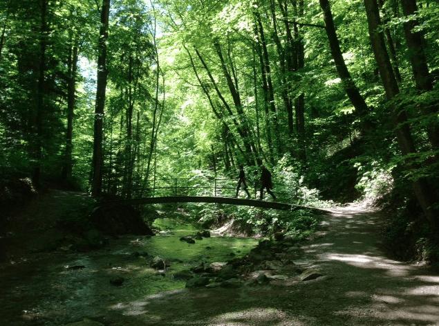 Tobler river near Kusnacht © NewInZurich.com