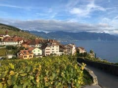 The Lavaux UNESCO World Heritage Vineyards