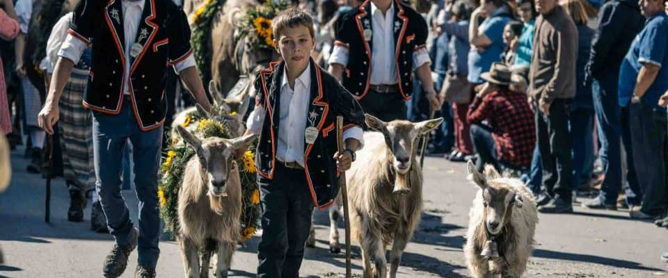 Photos of Entlebuch Alpabfahrt