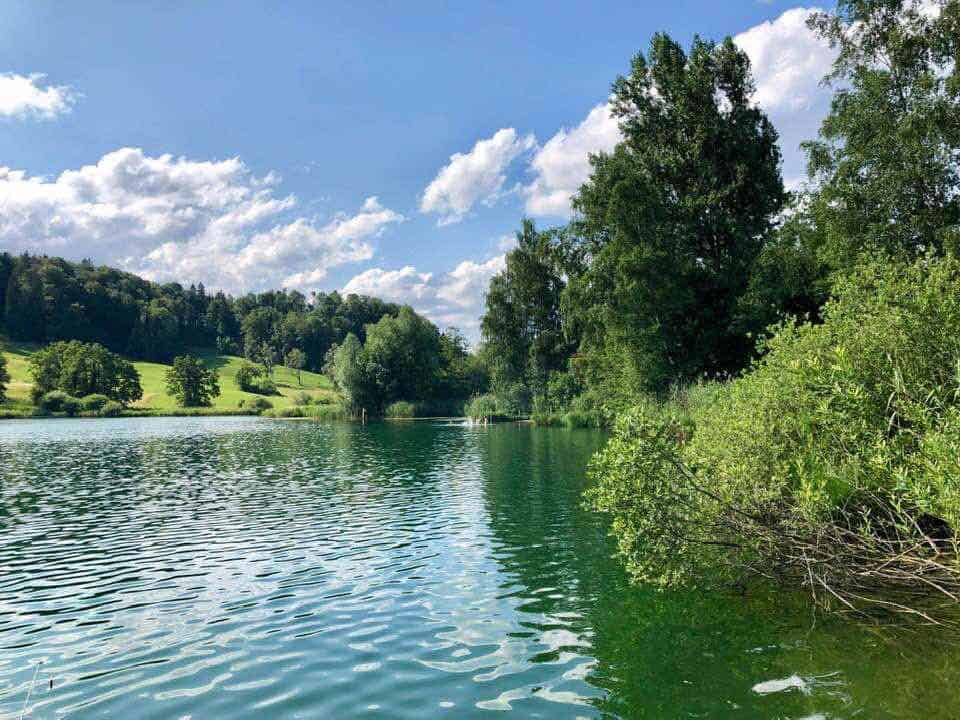 A Trip to Türlersee - A Little Lake Not Far From Zurich