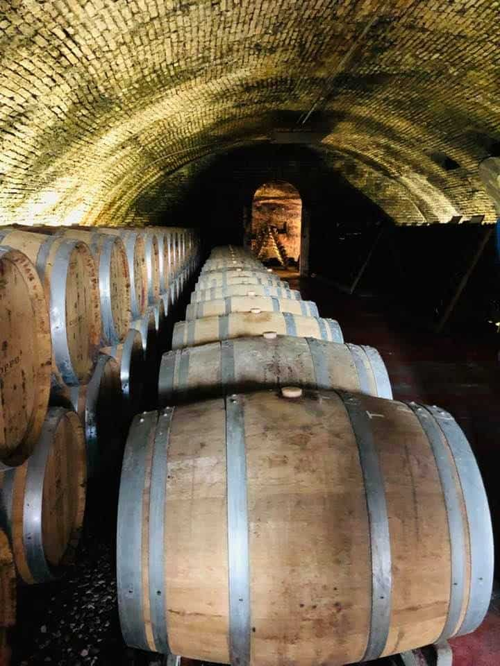 Coppa Winery Piedmont Italy