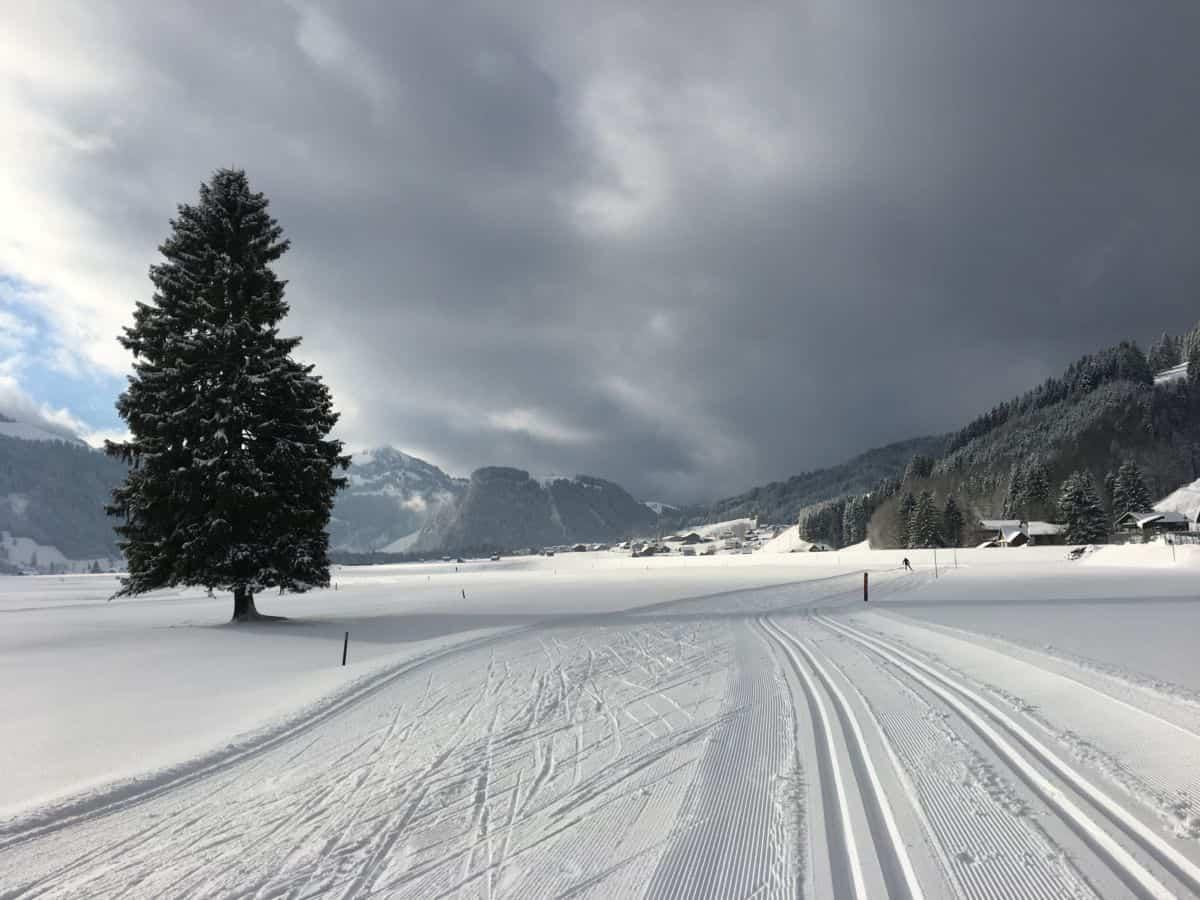 Langlaufen in Studen Switzerland