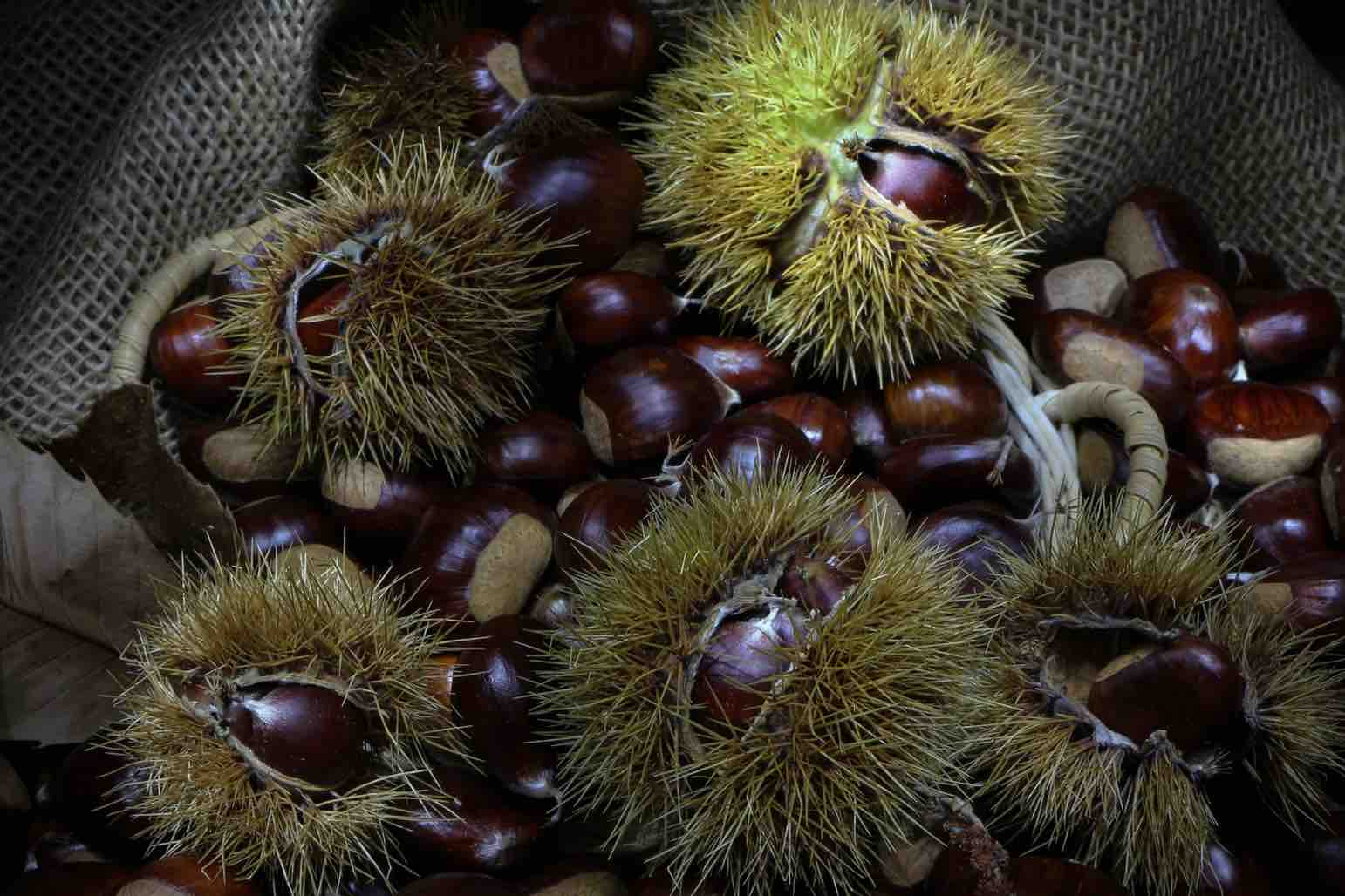 Chestnuts - Traditional Swiss desserts - Vermicelles
