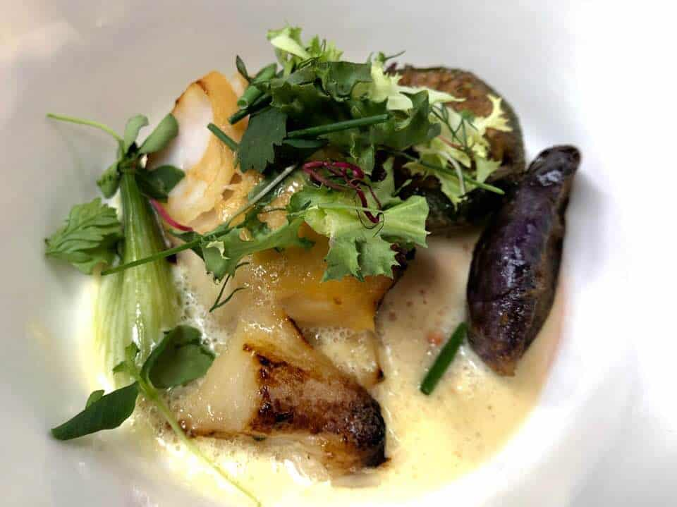 Black cod with aubergine and miso at Waldhaus Flims Kitchen Party