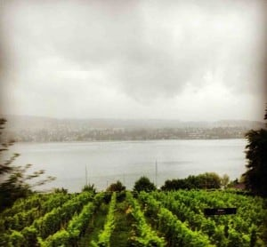 Rainy Day near Lake Zurich