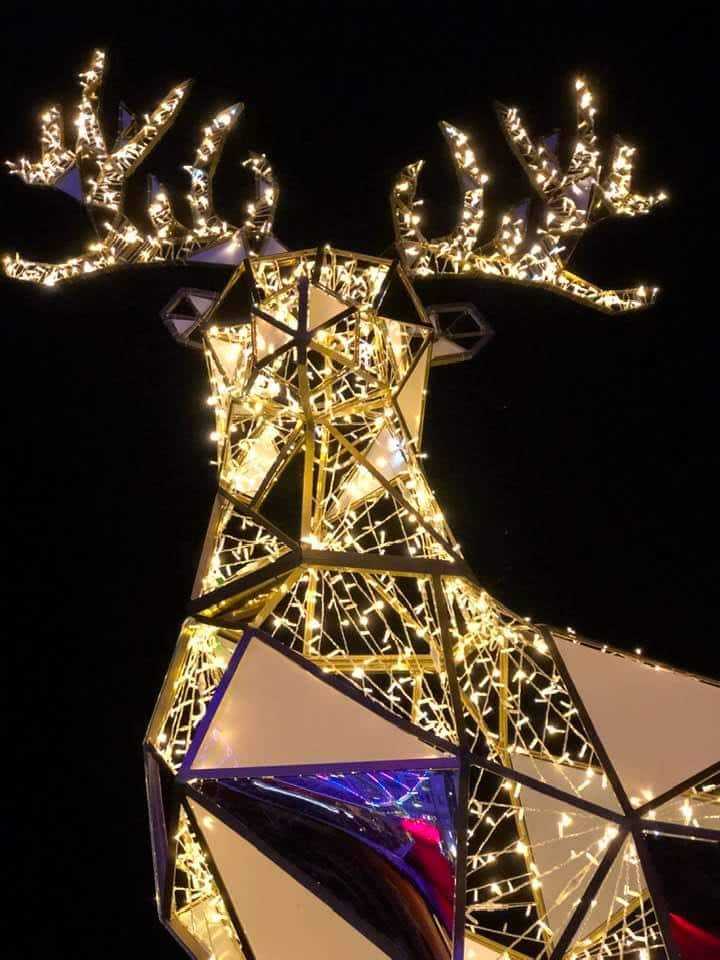 reindeer at montreux noel montreux christmas market