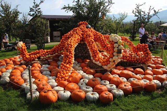 Biggest Pumpkin in the World in Switzerland! : NewinZurich ...