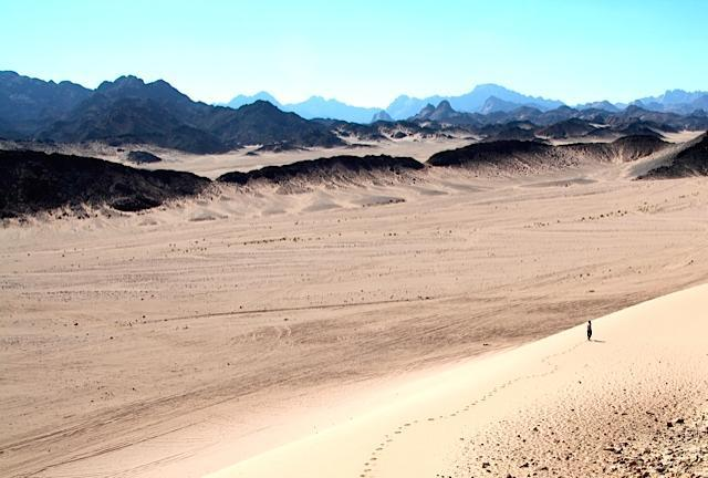 The desert in Egypt