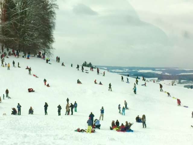 Sledging on the Ueltiberg