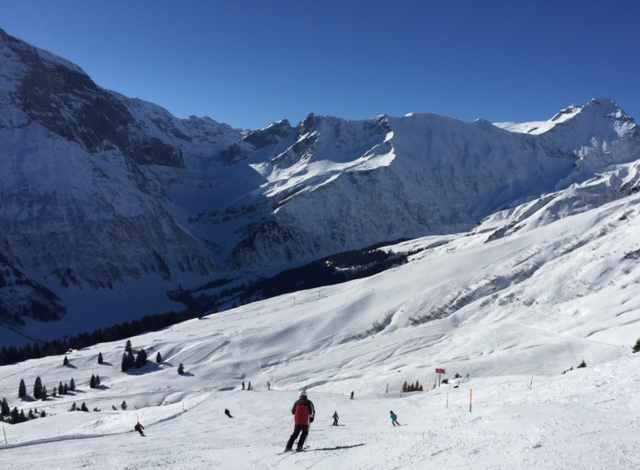 Skiing in Switzerland © Newinzurich.com