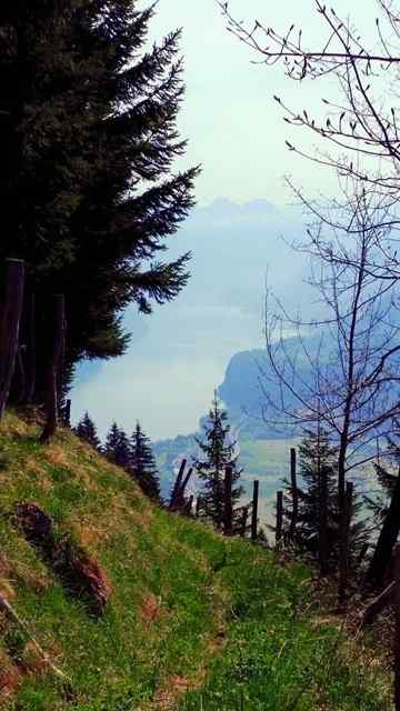 A hike to Hirzli