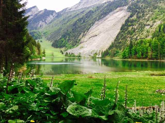 Hiking around Lake Obersee