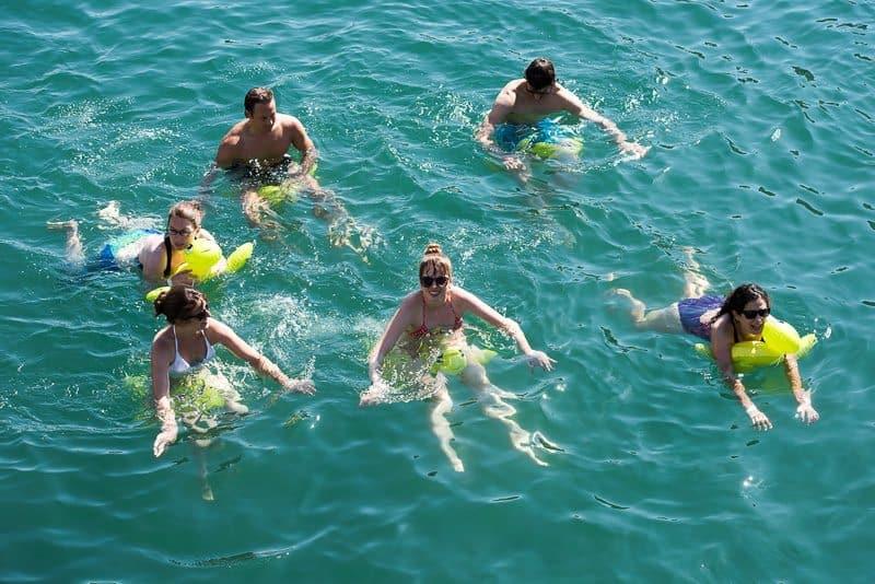 Limmatschwimmen Fotos