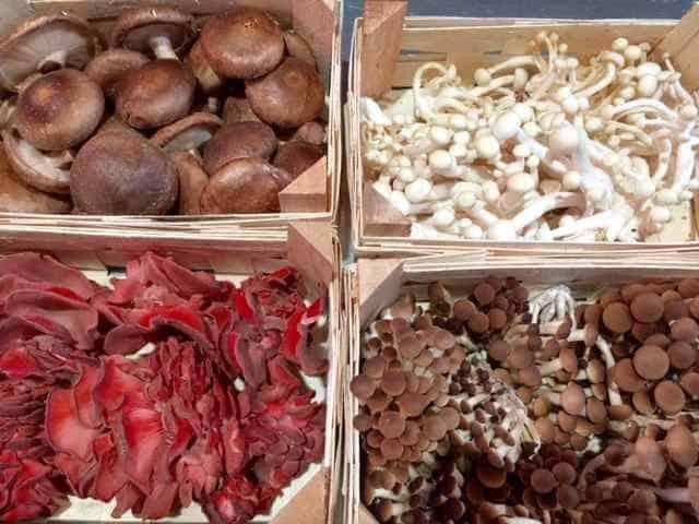 slow food market in photos
