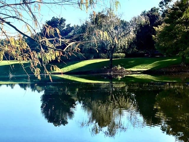 Ritz Carlton Grande Lakes Orlando.jpeg