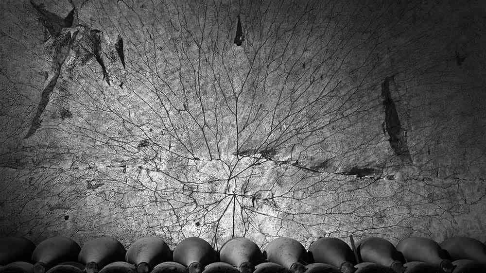 Erwin Olaf's Ruinart photography