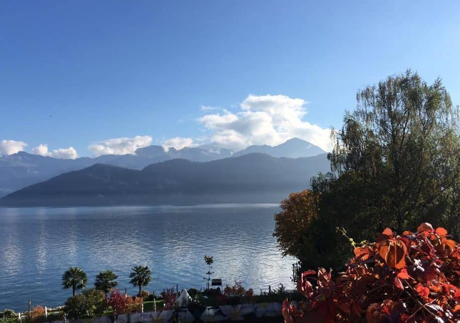 Park Weggis Lake Lucerne