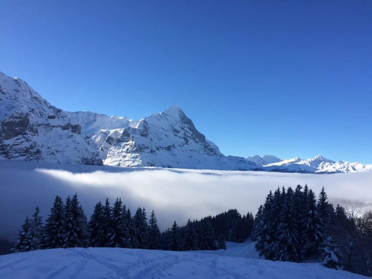 Stay in the Jungfrau Ski Region and Ski for Free