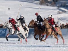 Photos of Snow Polo St Moritz
