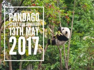 The PandaGO Sport Run Zumikon