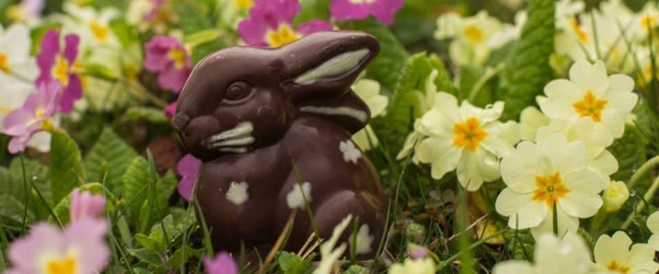 Easter Bunny in Zurich
