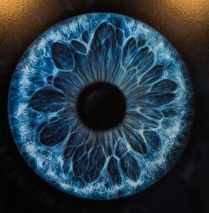 Impressions of Art International Zurich Iris Project by Kollektiv Lumen
