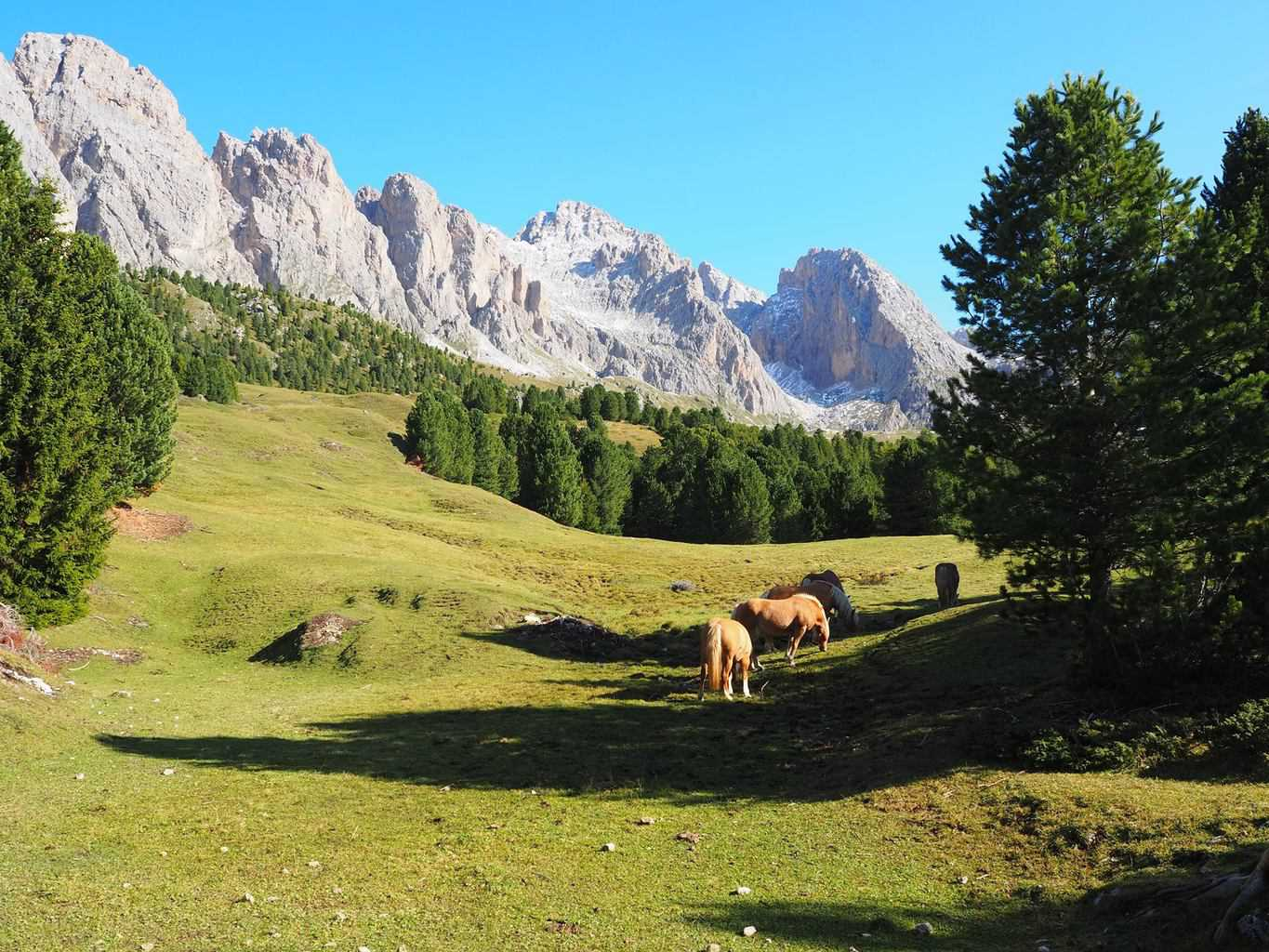 Walking and Wellness in the Italian Dolomites