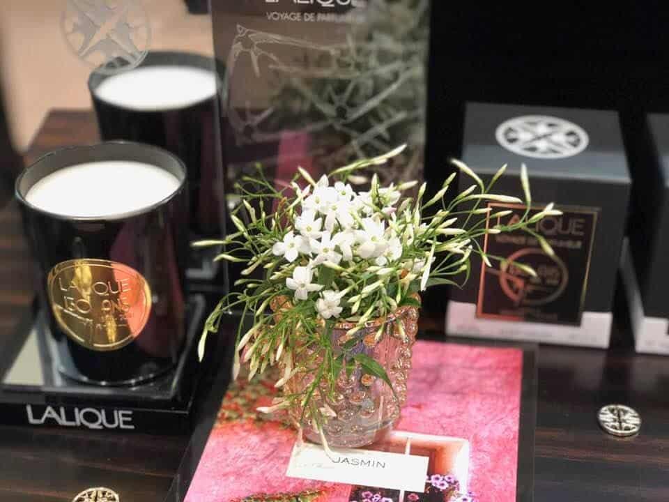 Lalique Mon Premier Cristal Hirondelles
