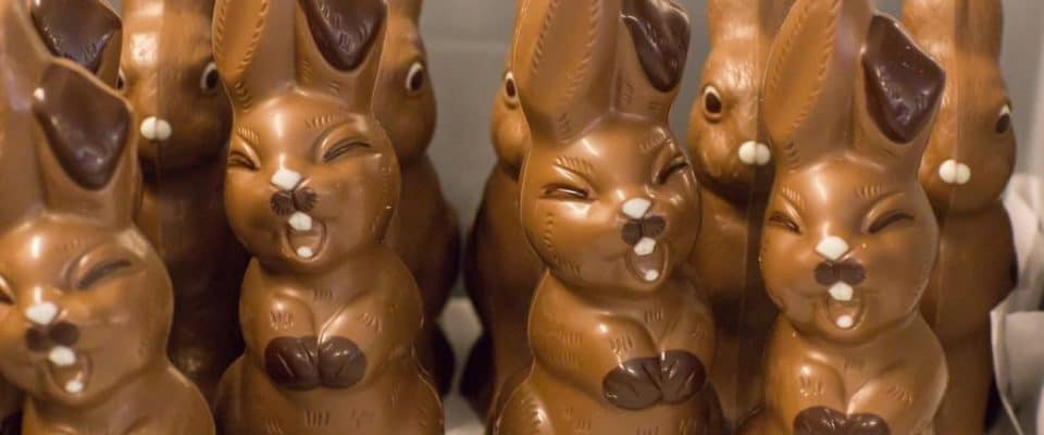 Behind the Scenes Chocolate Bunny Making at Honold's