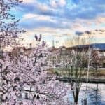 What's On In Zurich Early to Mid April 2018