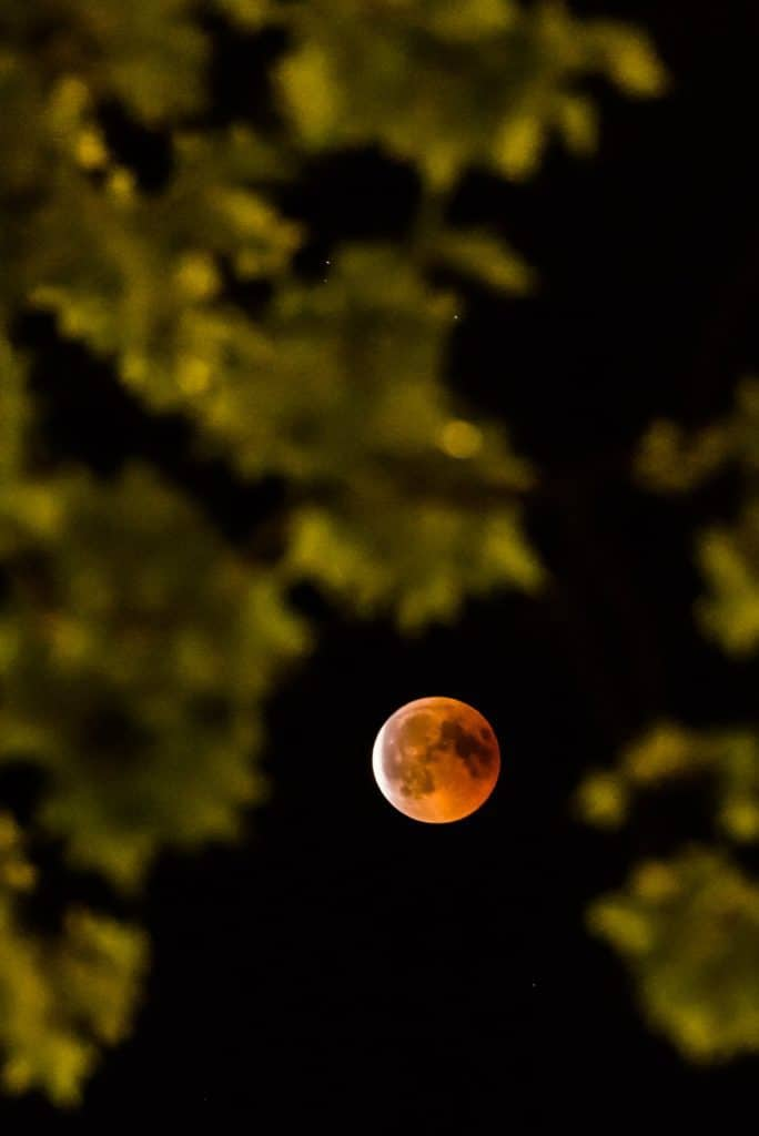 Blood Moon in Zurich