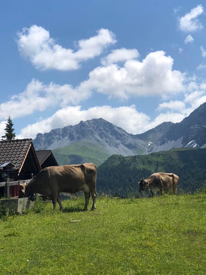 Hotel Valsana in Arosa Switzerland