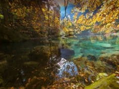 Autumn Glory at Blausee Switzerland