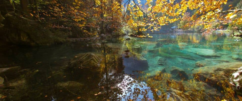 Blausee In Its Autumn Glory