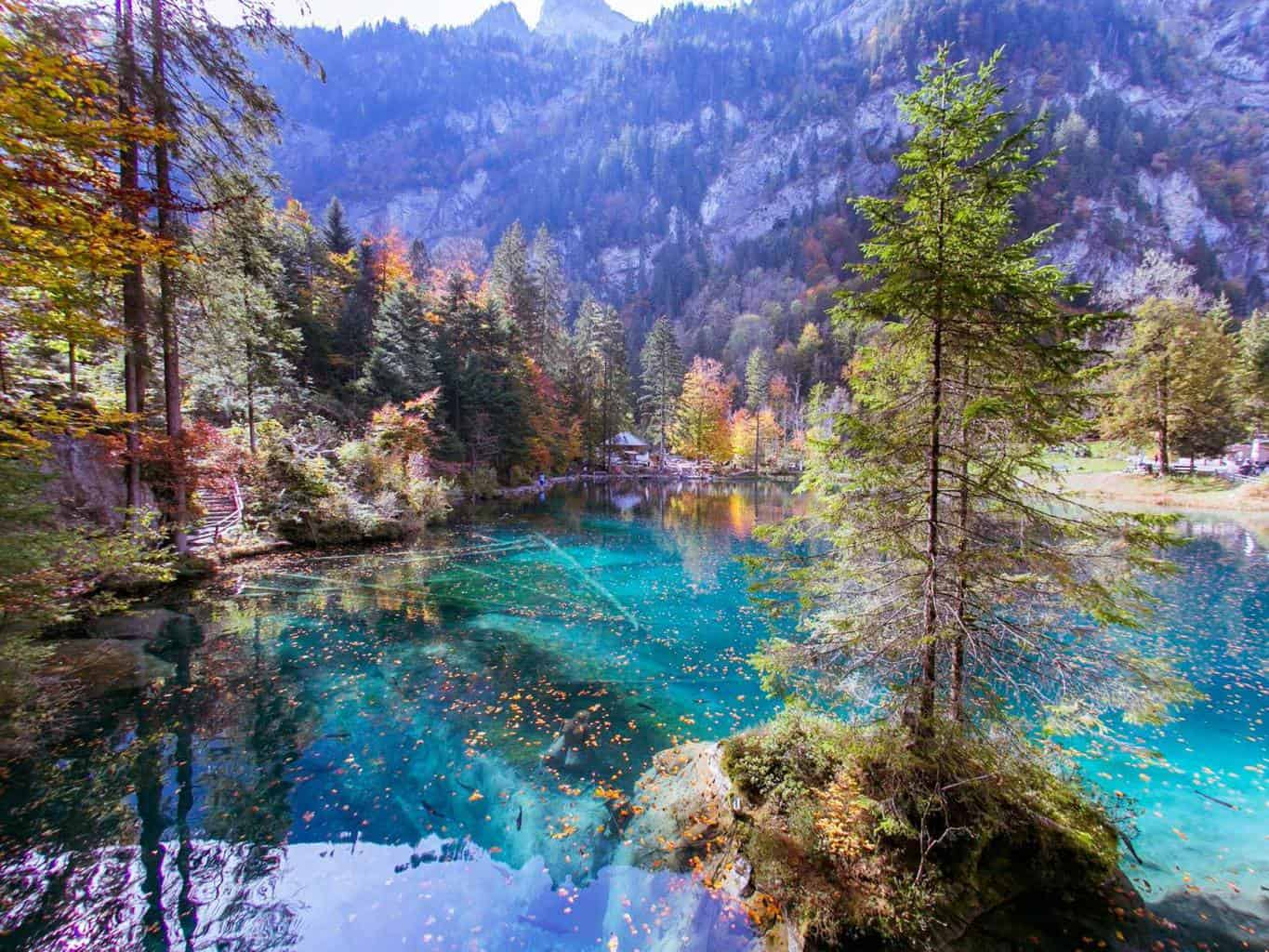 Autumn Views of Blausee The Stunning Blue Lake in Switzerland