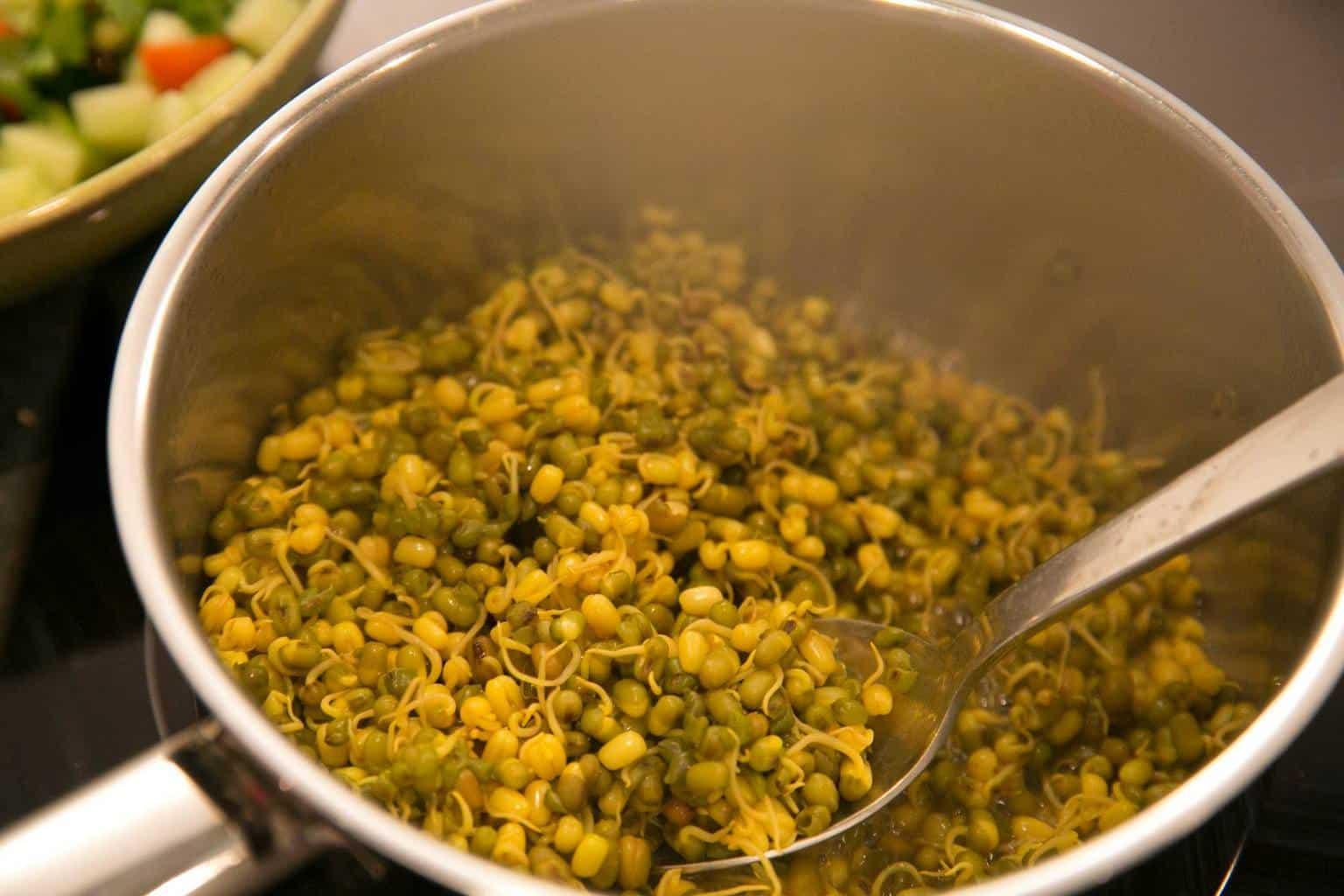 Lentil Sprouting Salad 2