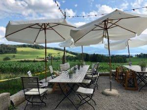 A Delightful Lunch at Albishaus Near Zurich