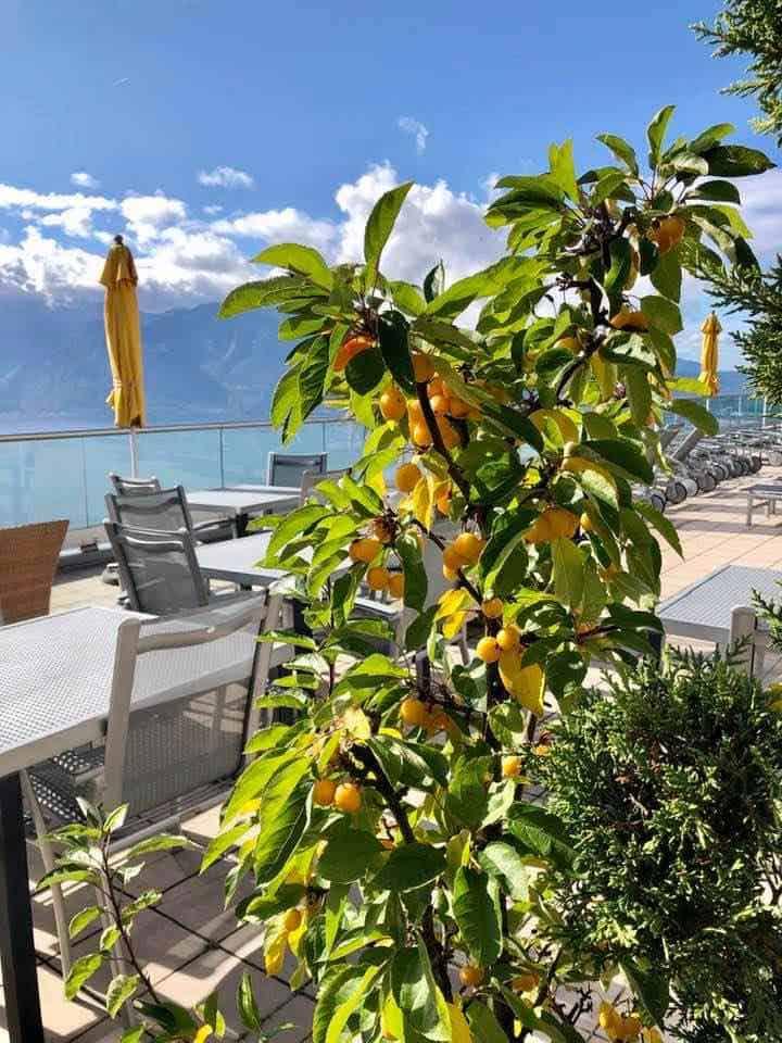The patio at le Mirador Resort & Spa Vevey