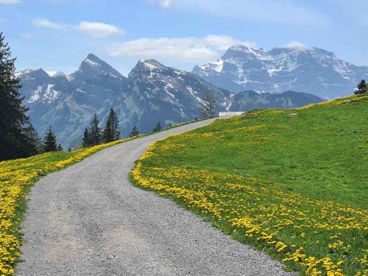 Hiking Around Amden on the Höhenweg above the Walensee