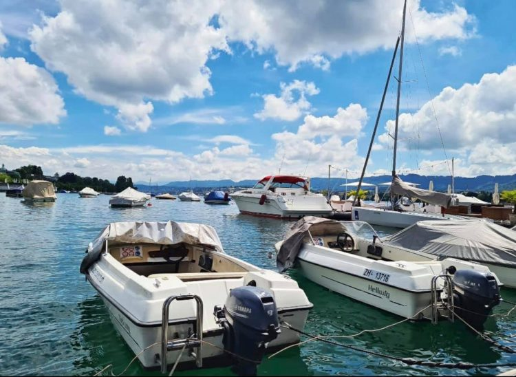 Pedal Boats on Lake Zurich