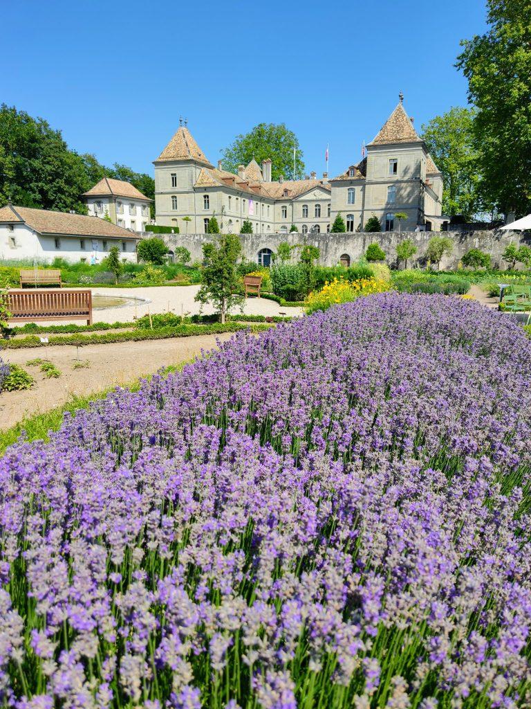 Chateau de Prangins – Prangins Castle Nyon